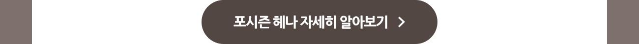 포시즌 헤나 자세히 알아보기